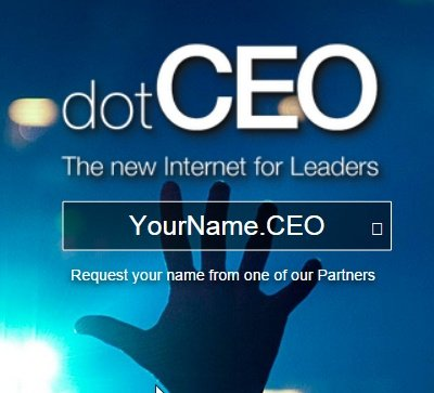 ceo domain names