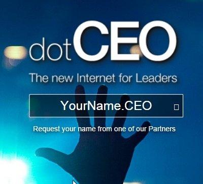 ceo domain names