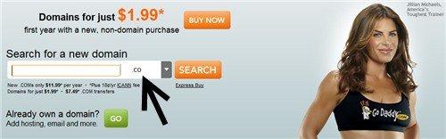 godaddy .co domain names
