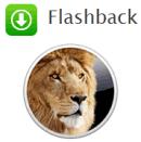 remove flashback tool